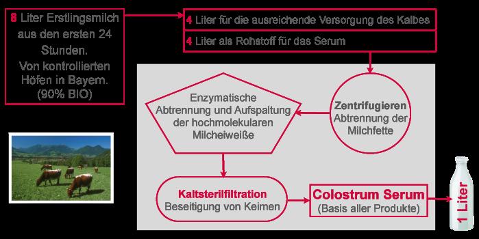 Vicosan Colostrum und Colostrum Aufbereitung