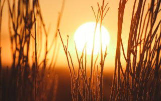 Vitamin D3 das Sonnenvitamin